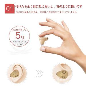 集音器 耳穴式 左右両用 充電式 超小型 軽量 肌色イヤホンキャップ大小4種|idr-store