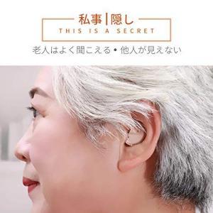 集音器 補聴器 拡聴器 充電式 聴覚補助 左右両用 雑音抑え 肌色 目立ちにくい 高級感 日本語取扱説明書付き idr-store