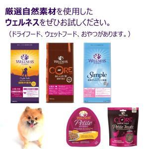ウェルネス ドッグフード 全犬種用 体重管理用(1歳以上) シンプル(食物アレルゲンに配慮) サーモン&じゃがいも(穀物不使用) 800g|idr-store