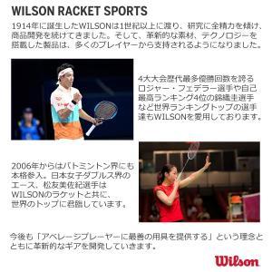 Wilson(ウイルソン) バドミントン ラケット フレームのみ FIERCE CX5600 W-i...
