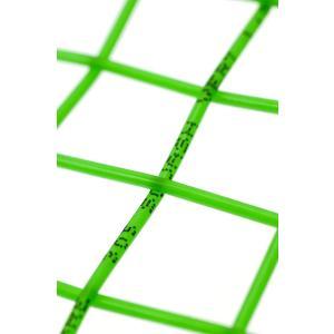 テクニファイバー(Tecnifibre) スカッシュ用ストリング、ゲージ1.20mm CLASSIC LINE 305 1.20 TF 12