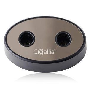Cigallia(シガリア) ダブル iQOS充電スタンド 2台同時 挿すだけ 充電 マグネット固定...
