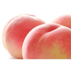 ★送料無料(本州・北海道限定)★ちょっとしたキズや色ムラのご家庭用の桃!ちょっと「訳あり」で、大変お...