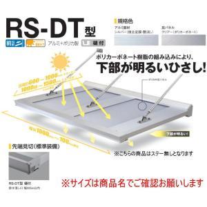 DAIKEN RSバイザー RS-DT型 D700×W2300 アルミ+ポリカ製 (ステー無) 樋付...
