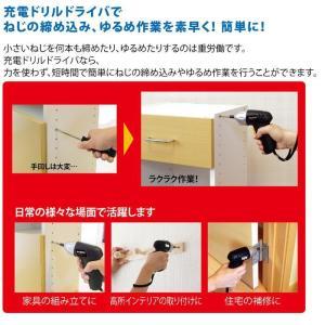 (棚卸処分特価)パオック 充電式ドリルドライバ PMD-3.6DD 3.6V ビット7本セット PAOCK iefan 05