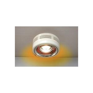 パアグ ヒーター内蔵天井照明ポカピカ2 半埋め込み型 P14P04D