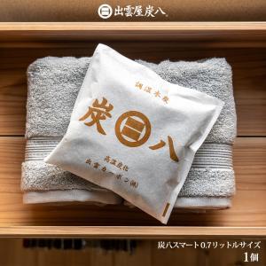 除湿剤 湿気 消臭 除湿 繰り返し 炭八 0.7L  1個|ienolabo