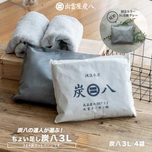 除湿剤 炭八セット 3L 4袋セット 湿気 除湿 調湿