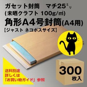 マチ付きガセット封筒 角A4(A4用)300枚入|ieos-y