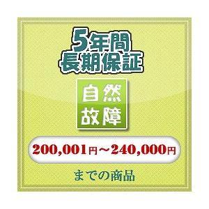 自然故障 【200,001 円〜240,000 円まで】|ifashion-store