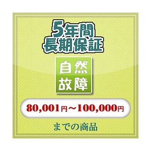 自然故障 【80,001 円〜100,000 円まで】|ifashion-store