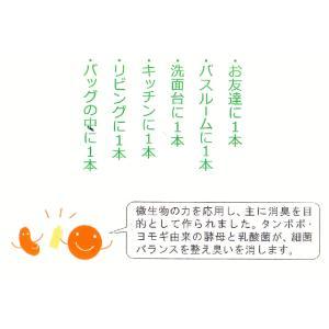 ばんのう酵母くん 6本 アーデンモア 正規品 万能酵母液|iff|02