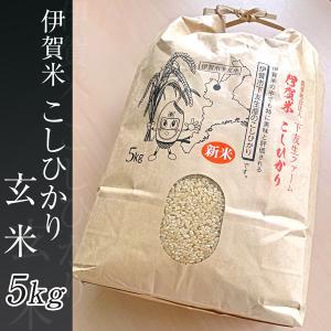 伊賀米 下友生ファーム コシヒカリ5kg 玄米|iga-ichi