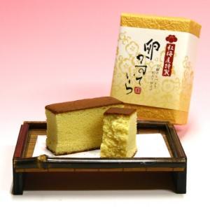 菓子 紅梅屋 かすていら(卵)半斤|iga-ichi