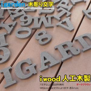 【7字以上ご購入で送料無料】腐らないアイウッド人工木製 木彫りアルファベット&数字1文字ダークブラウン オブジェ【H60mm】大文字【代引不可】  |igarden