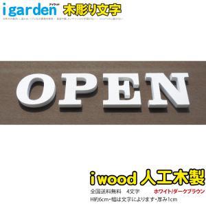 腐らないアイウッド人工木製 木彫りアルファベット&数字4文字 オブジェ【H60mm】大文字【代引不可】  |igarden