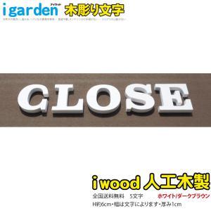 腐らないアイウッド人工木製 木彫りアルファベット&数字5文字 オブジェ【H60mm】大文字【代引不可】  |igarden