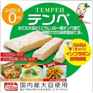 テンペ コレステロール0の栄養豊富な大豆発酵食品 テンペ3kgセット(100g×30袋) 自然派健康...