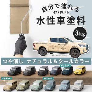 車塗料 ペンキ 水性塗料 Car Paint 3kg 全11色|igogochi