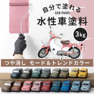 車塗料 ペンキ 水性塗料 Car Paint 3kg 全11色 igogochi