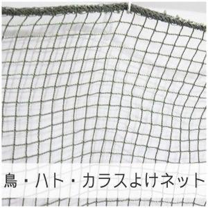 NET21ベランダ 鳥・はと・鳩・カラスよけ 防鳥ネット 巾101〜200cm 丈101〜200cm|igogochi