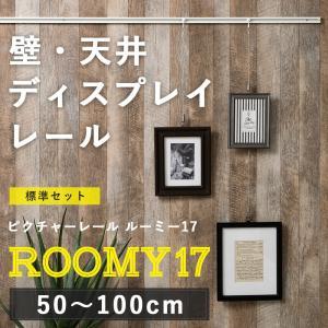 ピクチャーレール/スタイリッシュタイプ ルーミー17 標準セット/1mまで|igogochi