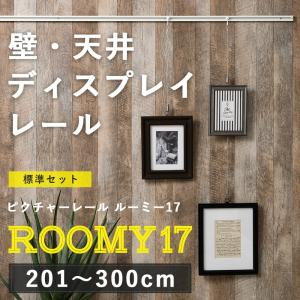 ピクチャーレール/スタイリッシュタイプ ルーミー17 標準セット/3mまで|igogochi