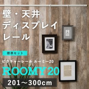 ピクチャーレール/アッパータイプ ルーミー20 標準セット/3mまで|igogochi