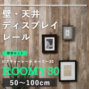 ピクチャーレール/スタンダードタイプ ルーミー30 標準セット/1mまで|igogochi