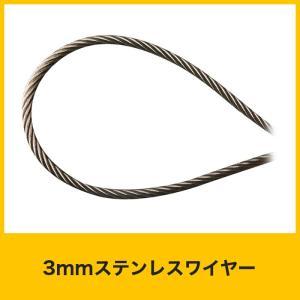 3mmステンレスワイヤー ロープ径Φ3mm R-SY30|igogochi