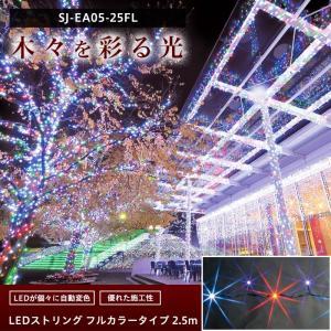 LEDイルミネーション LEDストリング フルカラータイプ 2.5m igogochi