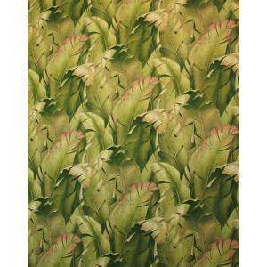壁紙 バナナリーフ igokochi