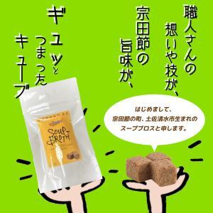高知 土佐清水食品 スープブロス 固形スープの素 40g(4g×10個)|igossou-sakaya
