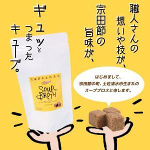 高知 土佐清水食品 スープブロス 固形スープの素 88g(4g×22個)|igossou-sakaya