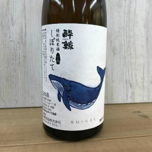 日本酒 高知 酔鯨 特別純米酒 しぼりたて生酒 720ml (SUIGEI)(新特)|igossou-sakaya