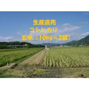 生産直売 令和元年産 コシヒカリ 玄米 20kg(10kg×2袋) 農家 産直 直送 新米 分づき精...