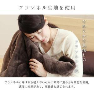 毛布 シングル 2枚合わせ毛布「フラン」 シングルサイズ(約140×200cm) あったか毛布 あたたか GL-tm 新生活|igusakotatu|03