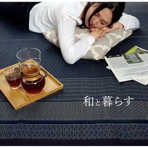 い草ラグカーペット DXランクス総色 176×230cm 国産 日本製 い草ラグ 夏 い草カーペット 裏貼 イケヒコ ござ モダン|igusakotatu|06