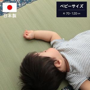 い草マット お昼寝 マット 70×120cm ことり 約70×120cm 寝ござ ごろ寝マット 夏 寝具 IB-tm igusakotatu