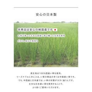 キッチンマット 選べるい草のキッチンマット 約43×120cm おしゃれ 夏用 お花畑 おさかな チェック プチブロック 日本製 120cm|igusakotatu|04