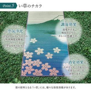 ヨガマット 畳ヨガ 60×180cm 厚み6mm 和柄 畳ヨガマット ヨガインストラクター公認 裏:PVC 国産 い草 和風|igusakotatu|07