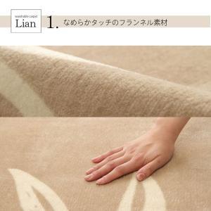 ラグカーペット 3畳 「WSキエナ」 約200×250cm ラグマット 3畳用 オールシーズン 洗える 花柄 シンプル フランネル 新生活 長方形(tm)|igusakotatu|05