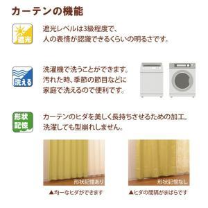 カーテン 2枚組 形状記憶 2級遮光 プリント 「ディアス」 幅100×高さ178cm(既製品) (uni) igusakotatu 04