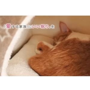 ペットベッド 猫 猫用 ツインクルキャット 選べる3種類 オーバル キューブ テント フランネル にくきゅう 肉球 IT-tm|igusakotatu|02