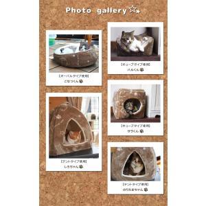 ペットベッド 猫 猫用 ツインクルキャット 選べる3種類 オーバル キューブ テント フランネル にくきゅう 肉球 IT-tm|igusakotatu|08