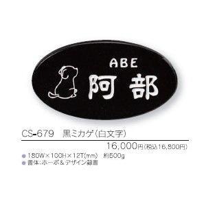 ライトスタイル表札 CS-679 黒ミカゲ(白文字)|iidaya