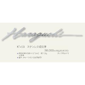 メタル(金属)表札 ステンレス切文字 KT-53|iidaya