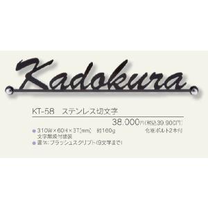メタル(金属)表札 ステンレス切抜き文字KT-58 ( 9文字まで)|iidaya