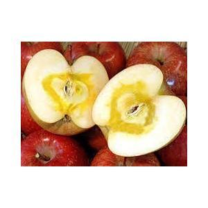 りんご5kg りんご 山形県産ふじりんご極上贈答用 送料無料