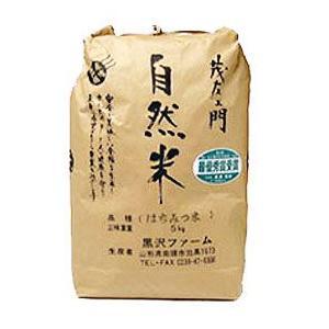 お米 はちみつ米 5Kg 令和2年度産 新米|iimon-ajisen